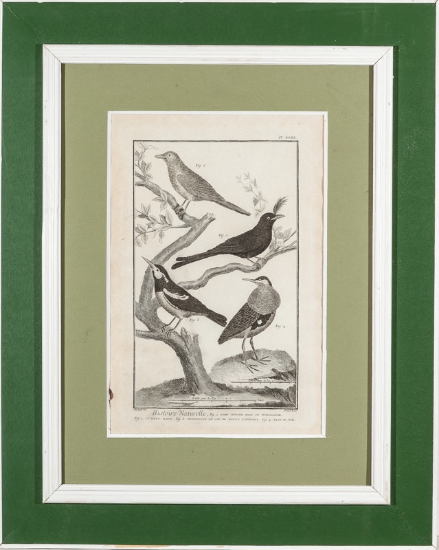 Bernard after Martinet, 18th Century